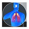 Pulmotrainer ®